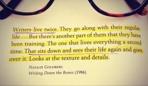 writerslivetwice