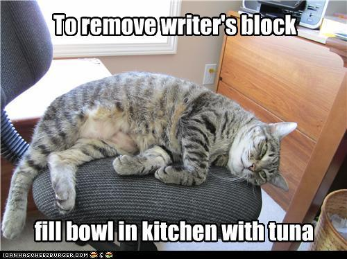 funny-pictures-to-remove-writers-block